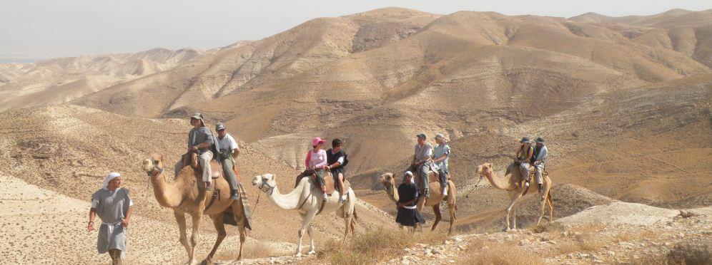 טיולים על גבי גמלים לאורך מצוק נחל פרת. לרגלי המטיילים פרוש נוף הנחל