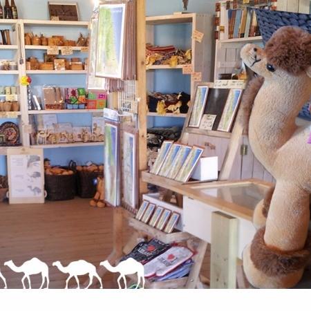 Genesis Land Gift Shop