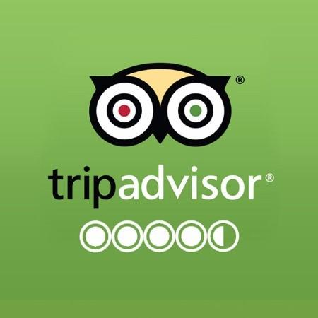 Tripadvisor genesisland testemonials