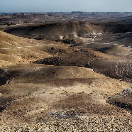 אטרקציות לנופשים בסביבת ירושלים וים המלח